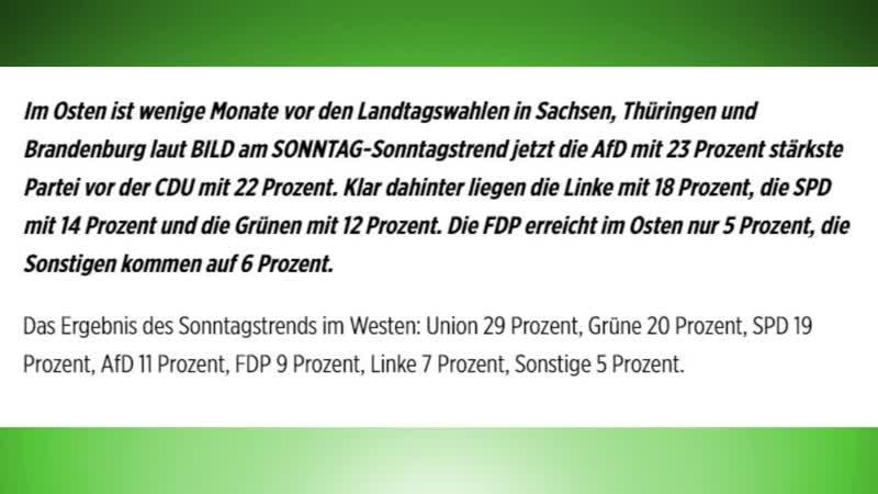 Schock Umfrage wegen der AfD! Euer Ernst Bild Zeitung