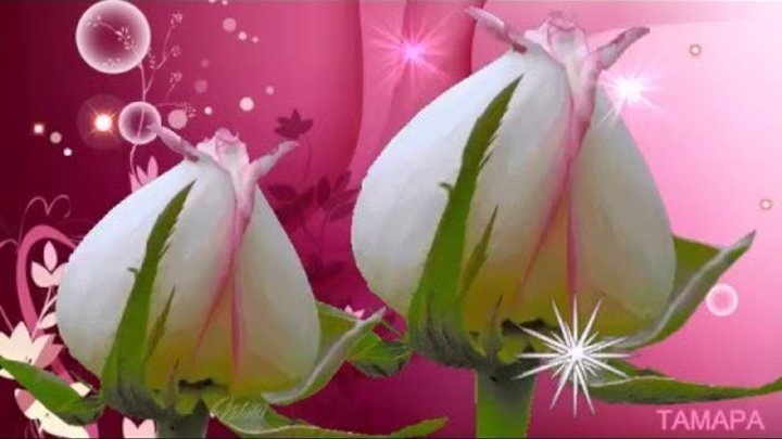 Маленький цветок саксофон Фаусто Папетти