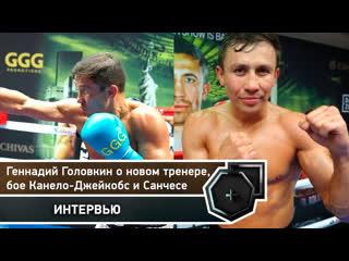 Геннадий головкин: общение с прессой в big bear | fightspace