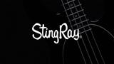 Ernie Ball Music Man StingRay Special 4-string in Jet Black