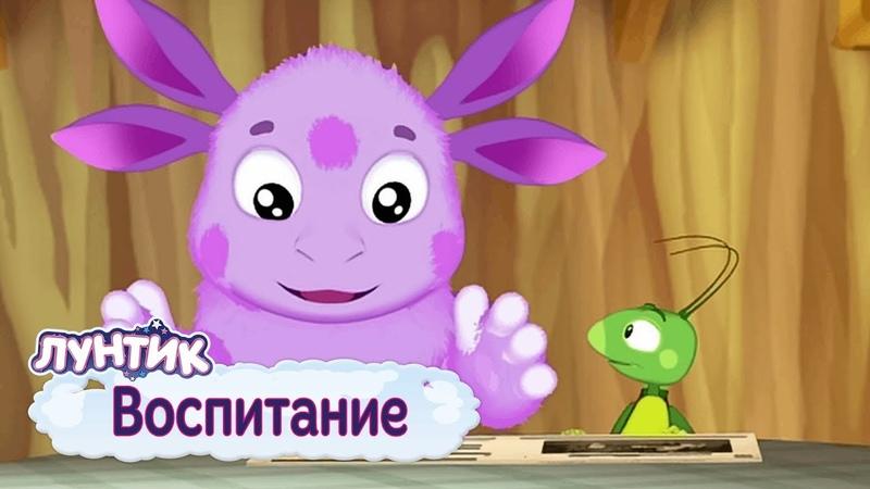 Воспитание ⚡ Лунтик ⚡ Сборник мультфильмов 2019