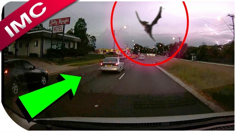 15 Minutes Of Mind Blowing Videos - Don't Watch This Video Home Alone !