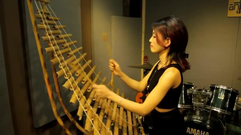 Con Bướm Xuân - Hồ Quang Hiếu Cover đàn Trưng