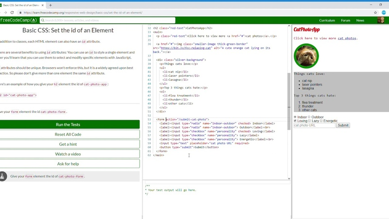 14/44 Basic CSS Set the id of an Element Learn freeCodeCamp