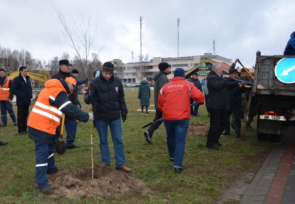 На улице Гаврилова возле ФОКа появилась «спортивная» аллея