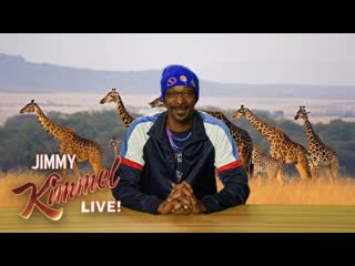 Snoop dogg рассказывает про обезьян в индии (переведено сайтом rhyme.ru)