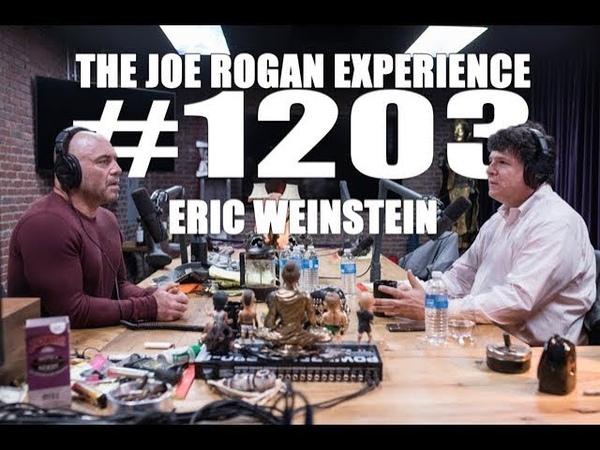 Joe Rogan Experience 1203 Eric Weinstein