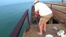 Рыбалка с Пирса на Чёрном море\Морская Рыбалка\Краснодарский край