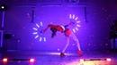 Световое шоу от KAIROS