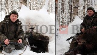 Чиновник на убитом медведе: СКР заинтересовался скандальными фото