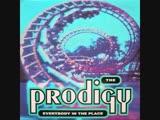 1141.25 D# the prodigy