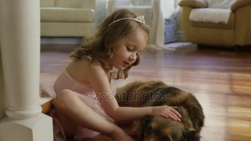 Depositphotos_84229790-stock-video-girl-petting-dog-on-floor.mp4