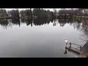 Купание в водоеме по фински