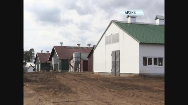 Осетровая ферма в Добрянском районе