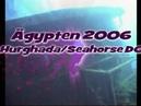 Ägypten Hurghada | Red Sea Tauchen | Sea Horse Diving Center | Wrack
