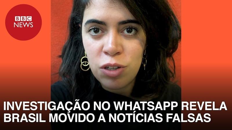 Fake news nas eleições: Investigação exclusiva revela Brasil dividido e movido a notícias falsas