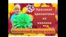 Ростовые цветы Хризантема из изолона Chrysanthemum of isolate