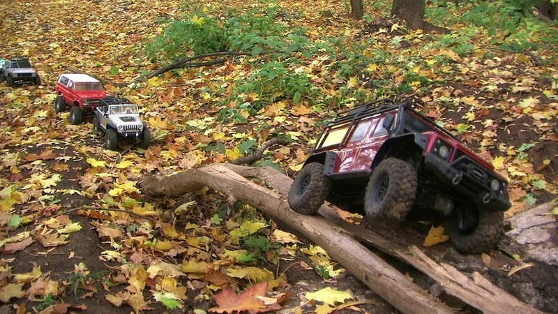 Golden autumn, rc trophy, Axial, MST, Remo Hobby, TRX. Part I