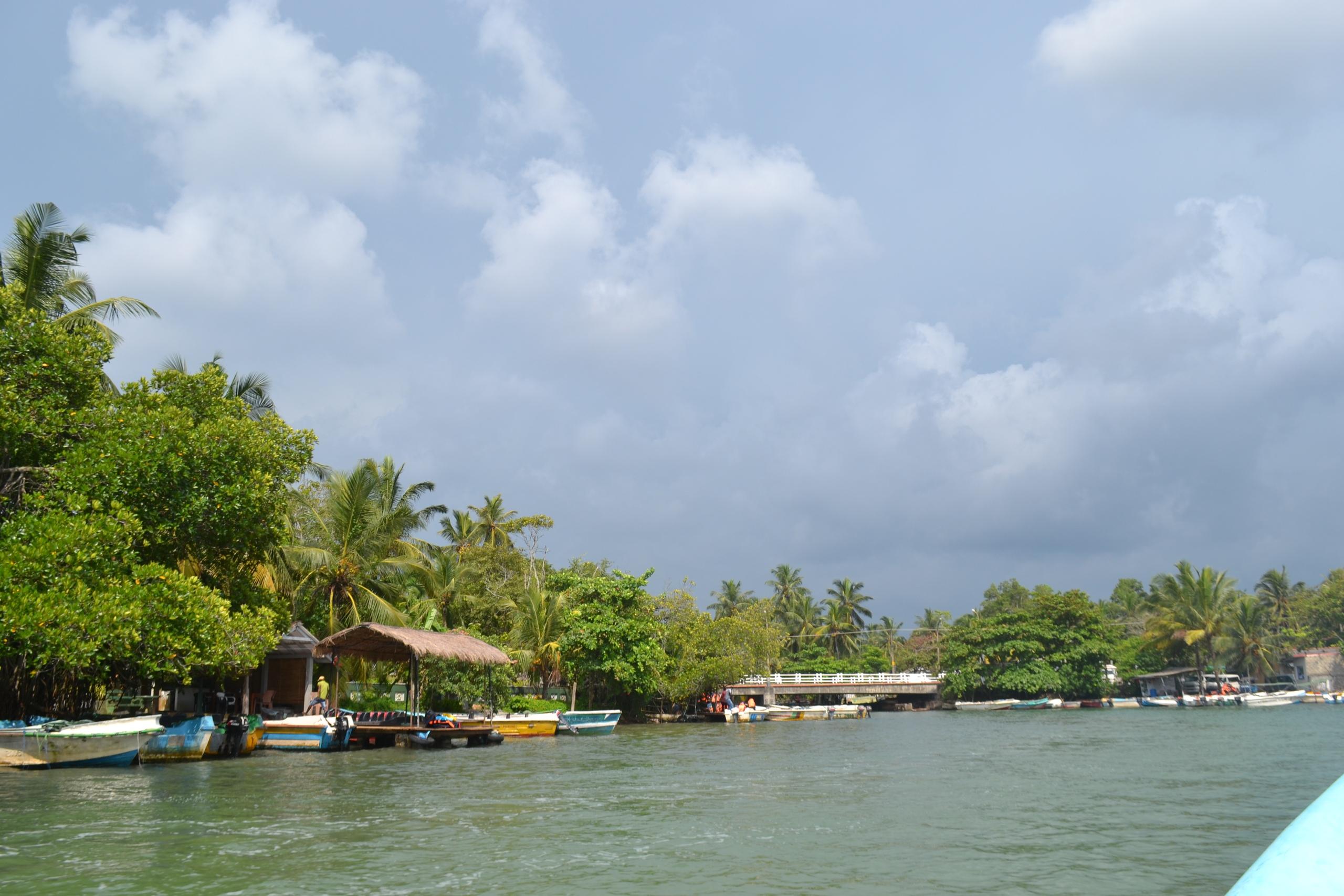 Шри Ланка (фото) - Страница 9 CnSREotapdw