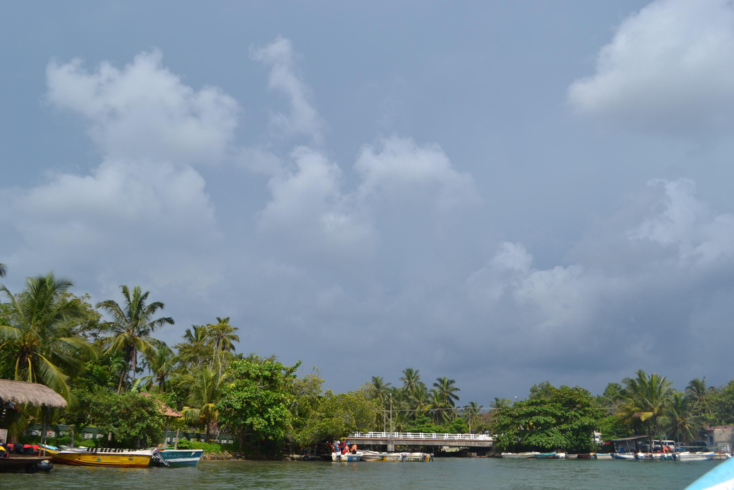 Шри Ланка (фото) - Страница 9 YcT0IESGUJU
