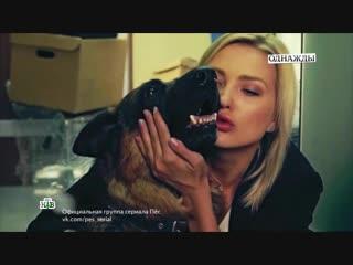 Актриса Светлана Брюханова о сериале Пес,и эксклюзив от Никиты Панфилова