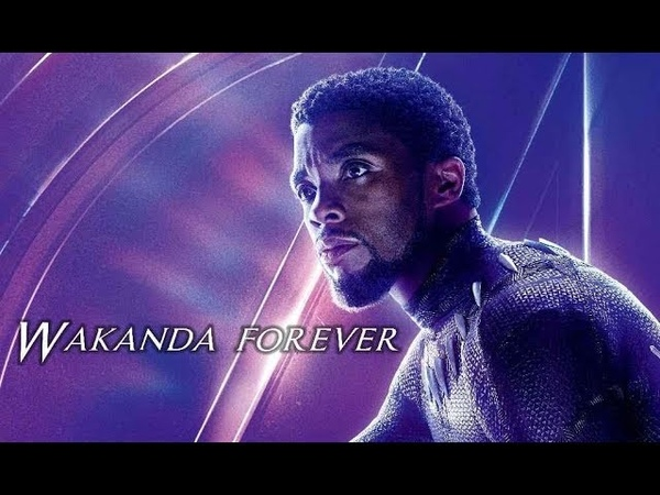 Black Panther Tribute The Response Road to Infinity War