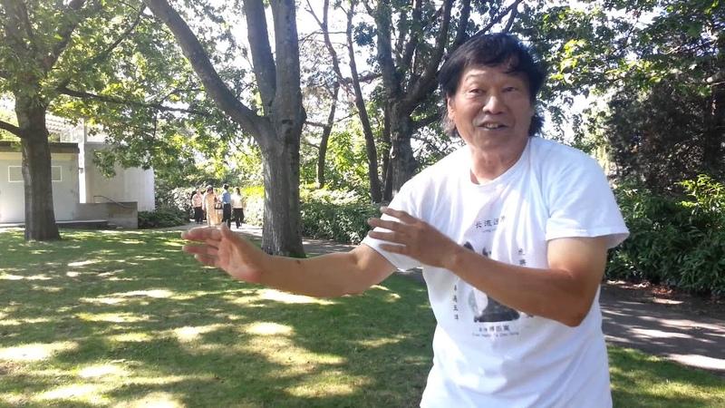 Fu Style Power Releasing Skills - Xingyi 傅家發勁秘訣 - 形意