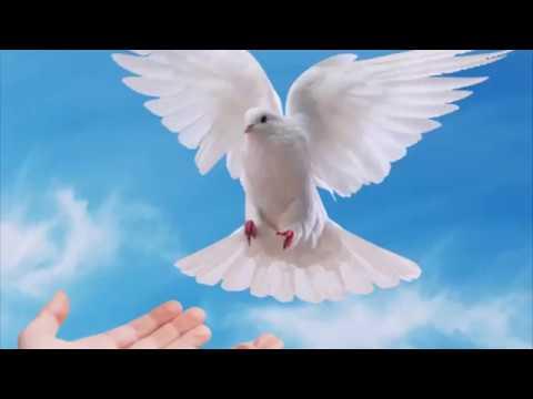 Нам потрібне мирне небо