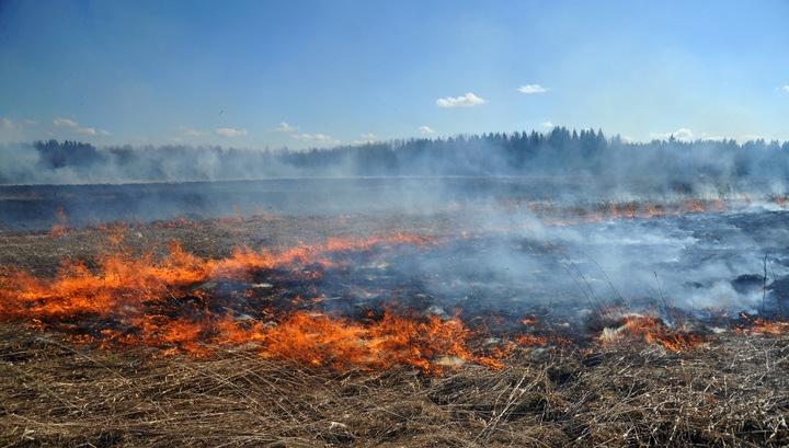Поджоги сухой растительности и мусора – одна из основных причин возникновения лесных и степных пожаров