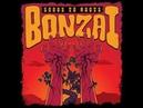 Bonzai - Seeds to Roots (2019) (New Full Album)
