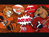 LIVE! «Амурские Тигры» - «Красная Армия» (02.12 – 06:00)