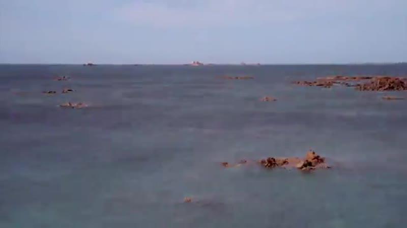 BBC Земля. Мощь планеты. 4. Океаны (2007)