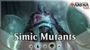 Simic Mutant Midrange - MTG Arena Ravnica Allegiance Deck Guide Gameplay