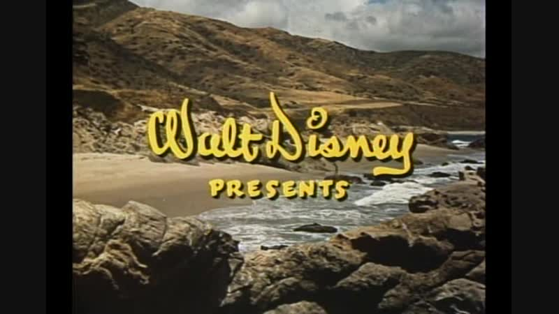 Sammy. La Foca Loca (1962)