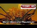 Top 10 acquari biotopi di tutto il mondo 🐠