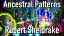 Rupert Sheldrake - Ancestral and Family Patterns (Video Lecture)