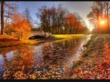 Скоро Осень Господа. Автор Александр Серегин, исп. Павел Соколов.До слез душевная песня!!!