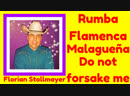 Malagueña Flamenca, Rumba and Do not forsake me PLUS TENOR HIGH C Florian Stollmayer