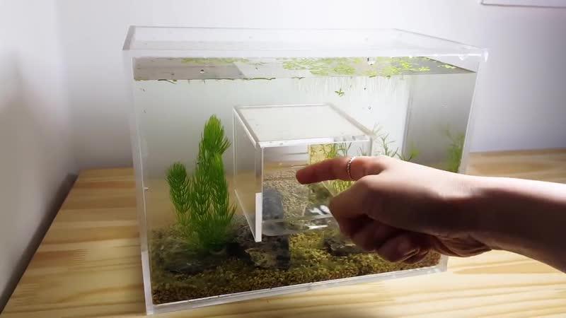 Нано аквариум с отверстием в середине
