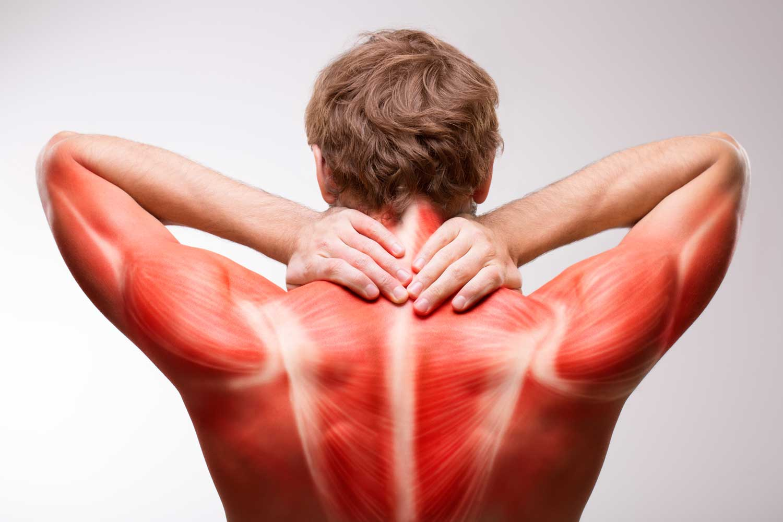 Причины мышечной боли в спине