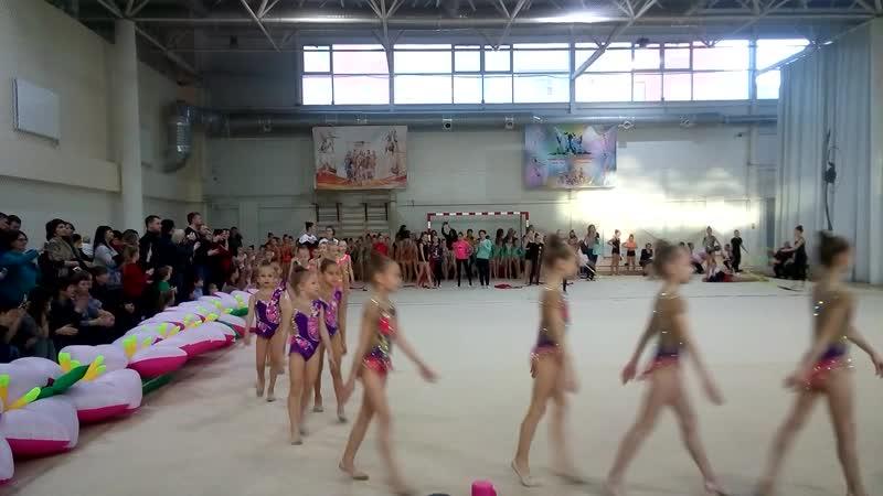 Парад гимнасток