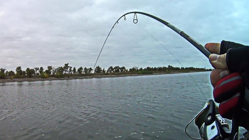 И всё-таки он КЛЮНУЛ! Рыбалка осенью на судоходном канале в туман