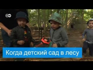 Детсад в лесу
