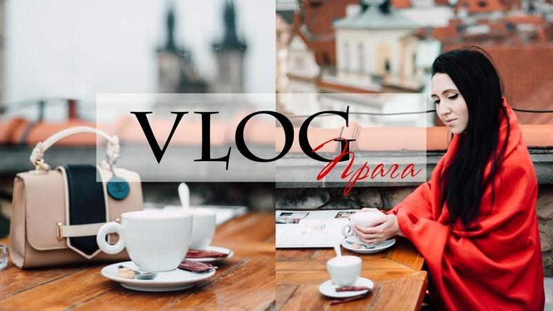 VLOG Prague | ВЛОГ Прага (Рождественская ярмарка, ресторан на крыше, сад игры престолов) день 2