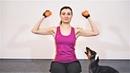 Фитнес Тренировка Дома С Собакой Приколы с животными Упражнения для поднятия настроения dachshund