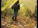 Стекловата - Просто осень (С.Кузнецов) (2)