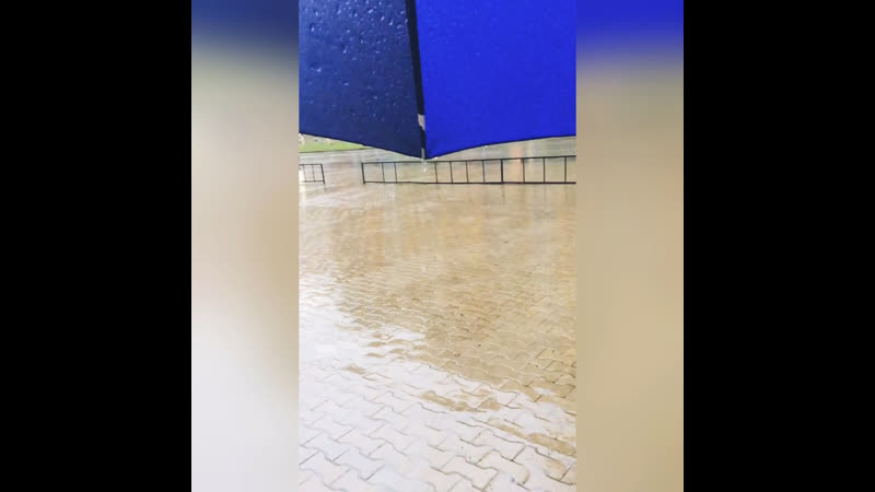 Дождик ☔️