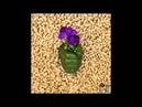 [Audio]크래커(CRACKER) - Peanut Monster (feat.한결 of 레이백사운드, EK of M.B.A.)