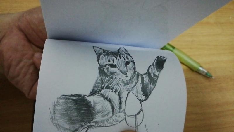 Flipbook - Cat jump like a BOSS!!