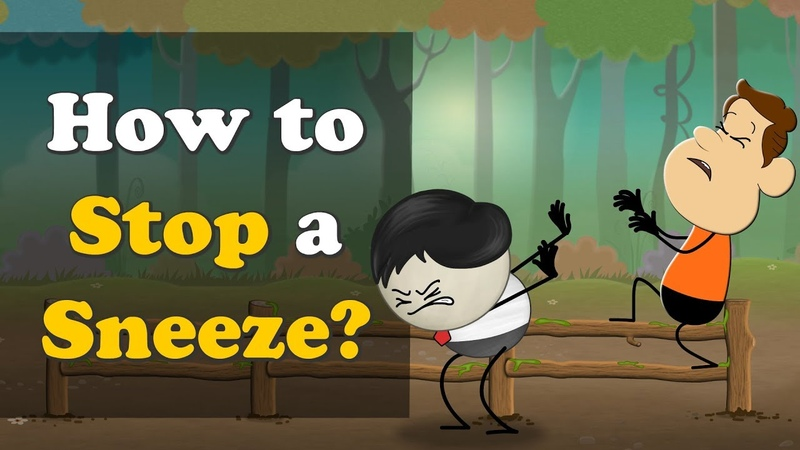 How to Stop a Sneeze? | aumsum kids education